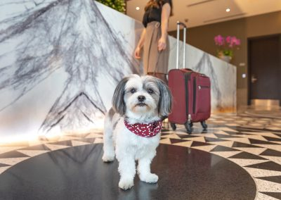 Hotel-X-Toronto-Reception-Check-in