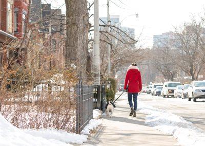 Toronto-dog-walker-photographer