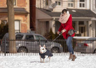toronto-dog-walking-photography