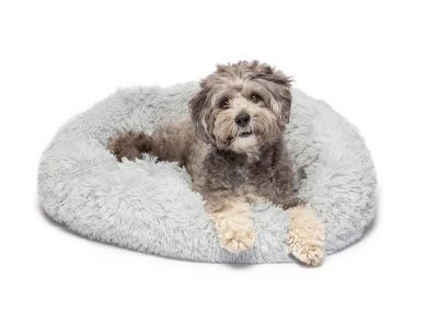 happy dog relaxing in cuddle bed