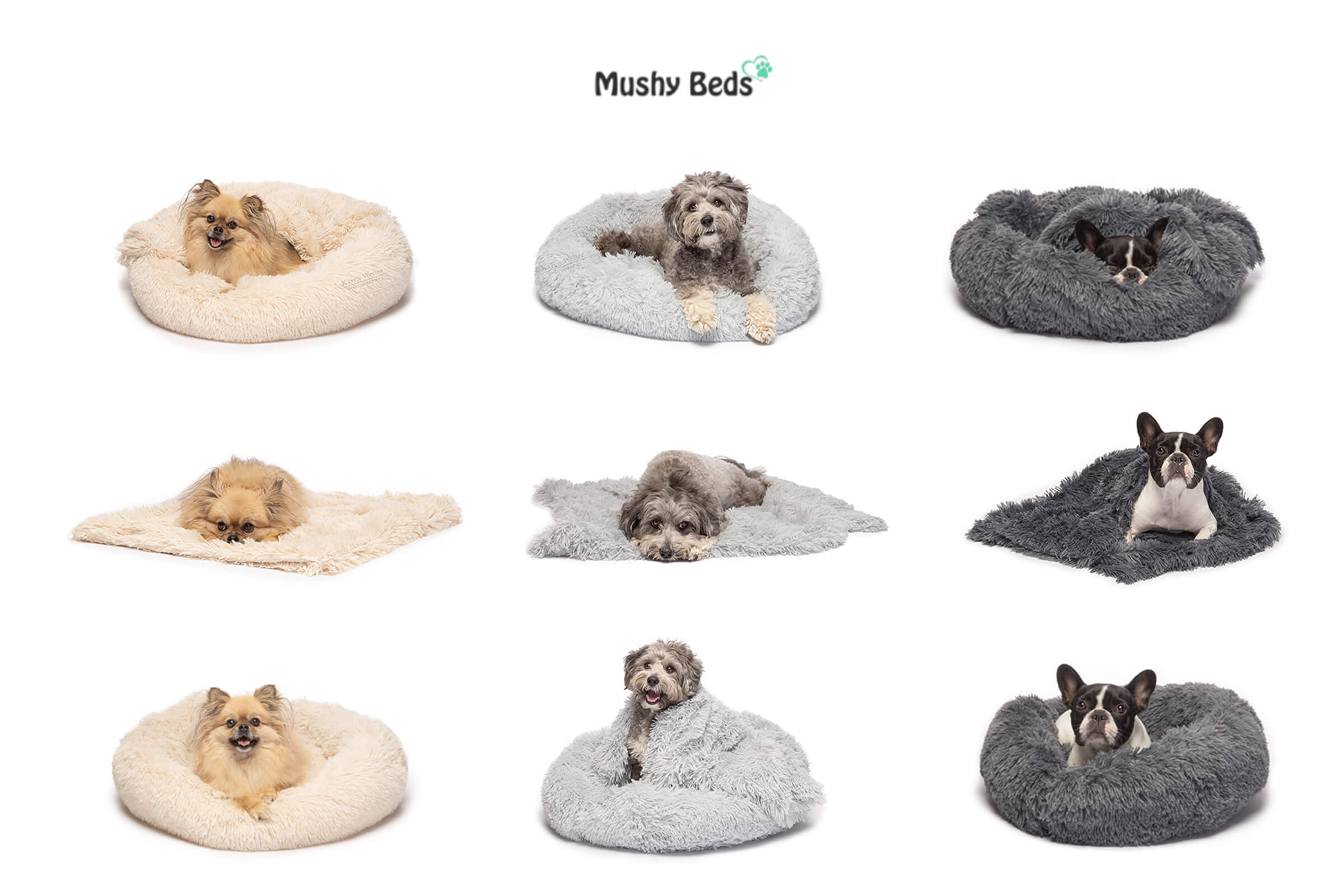 commercial photography for pet beds