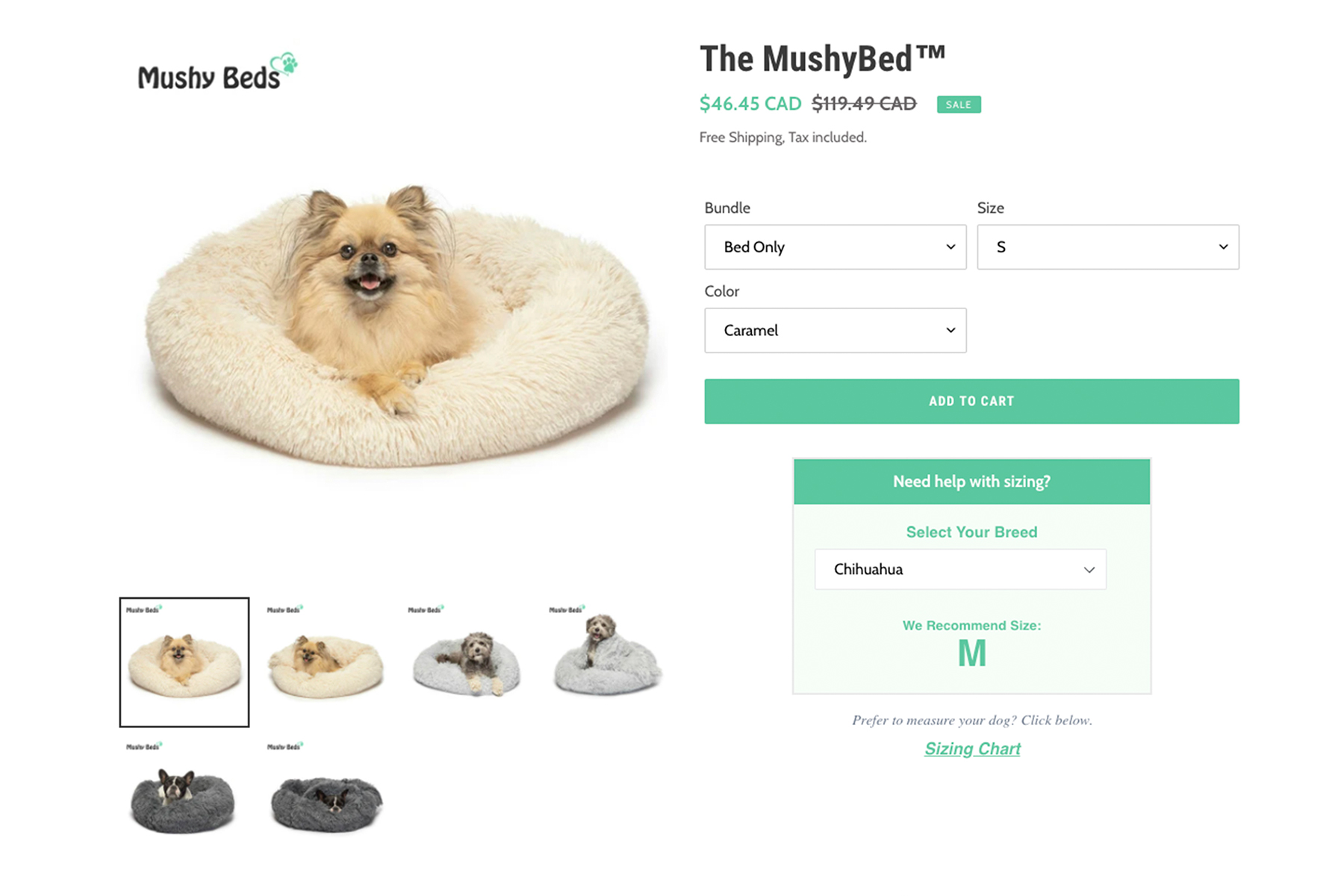 pet bed website product photographer