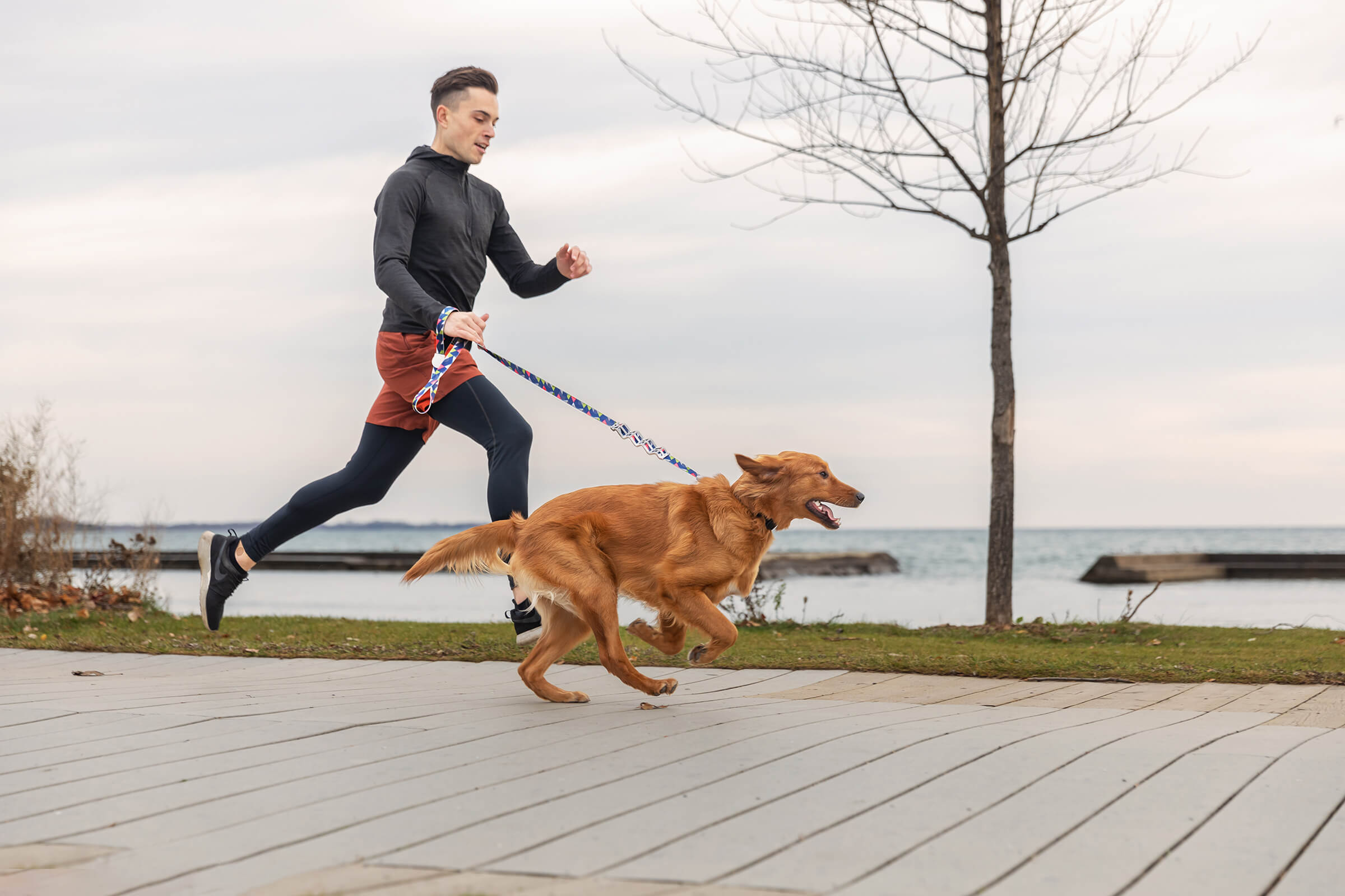 runner with red setter during commercial shoot